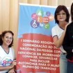 Assistentes sociais da Região Sul participam de seminário sobre Dia Nacional da PcD