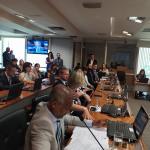 CRESS GOIÁS participa de audiência sobre regulamentação da avaliação biopsicossocial